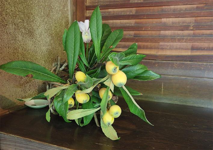 茶室に飾られた枇杷の枝