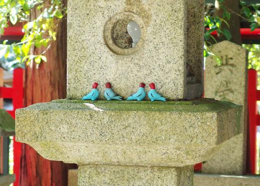 子どもが無事成長したお礼にお返しされた神鳩