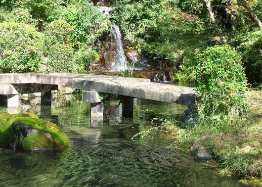 比叡山の谷水が引かれた池