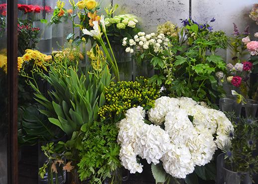 アジサイやバラなど色とりどりの花